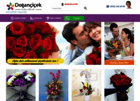 dogancicek.com