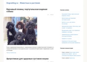 dogcatdog.ru