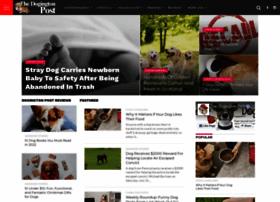 dogchatforum.com