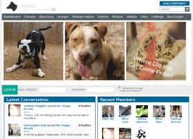 dogfood.smallworldlabs.com