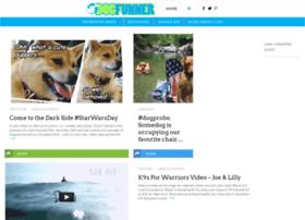 dogfunner.com