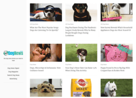 dognews.co.uk