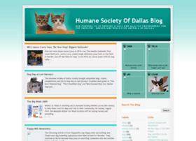 dognkittycity.blogspot.com