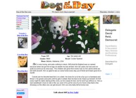 dogoftheday.com
