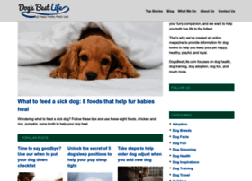 dogsbestlife.com
