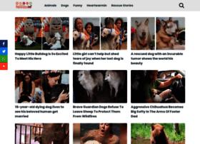 dogswoofs.com