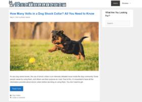 dogtelligent.com