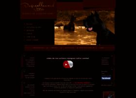 dogueallemandnotre.com