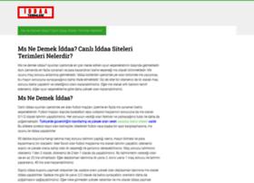 dokuzeylulgazetesi.com