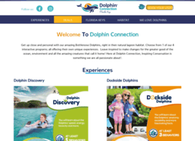 dolphinconnection.com