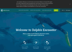 dolphinencounter.co.nz