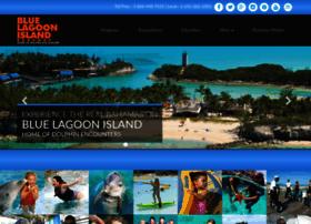 dolphinencounters.com