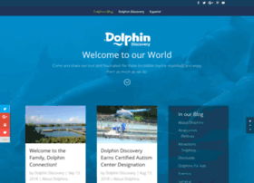 dolphinswimming.dolphindiscovery.com