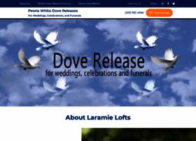 dove-guy.com