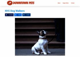 Downtownpet.com