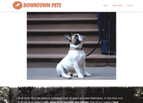 downtownpet.com