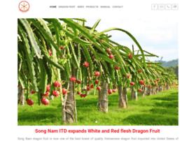 dragonfruit.net.vn
