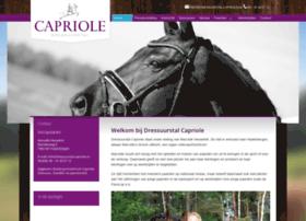 dressuurstal-capriole.nl