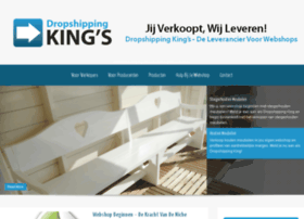 dropshippingkings.nl