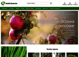 drzewa.com.pl