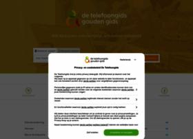 dtgi.detelefoongids.nl