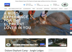 dubareelephantcamp.com