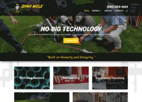 dynamole.com