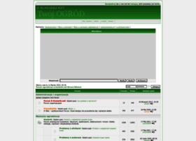 e-kosiarki.net