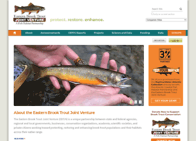 easternbrooktrout.org