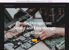 easyfilestorage.com
