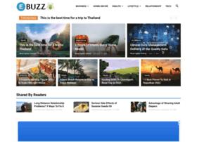 ebuzzspider.com