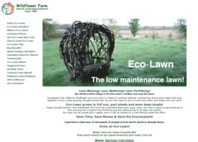 eco-lawn.com