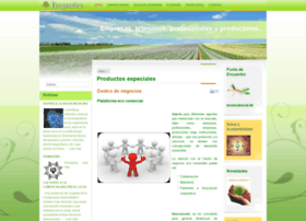 ecogeotica.com