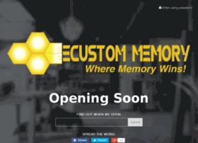 ecustommemory.com