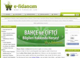 efidancim.com