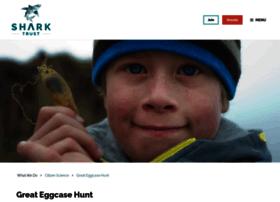 eggcase.org