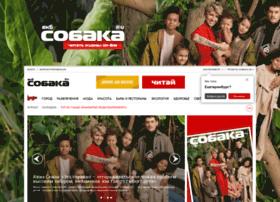 ekb-sobaka.ru