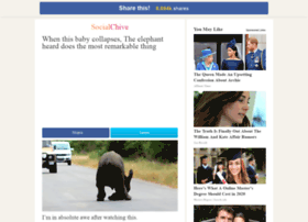 elephant-heard.socialchive.com