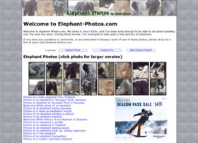 elephant-photos.com