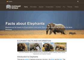 elephant-world.com