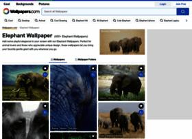 elephantsforever.co.za