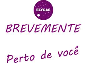 elygas.com
