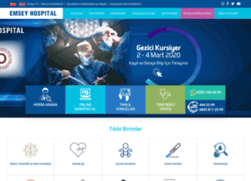 emseyhospital.com