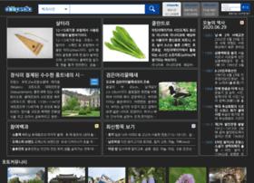 encyber.com