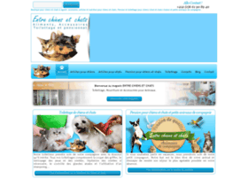 entre-chiens-et-chats-agadir.com
