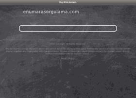 enumarasorgulama.com