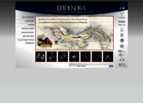 epidendra.org