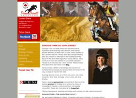 equestriantrainingboardinglessons.com