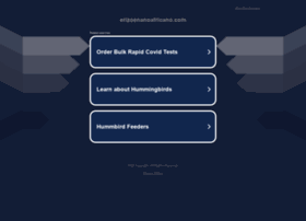 erizoenanoafricano.com
