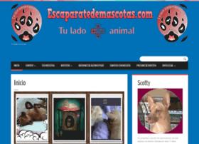 escaparatedemascotas.com